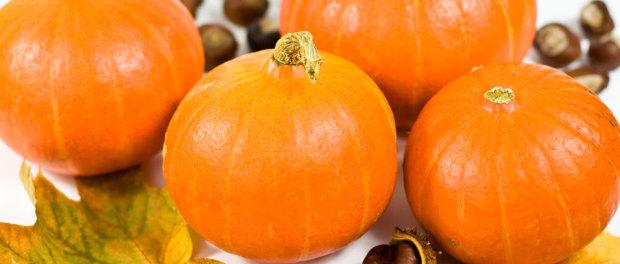 Kürbis - nicht nur zu Halloween ;-)